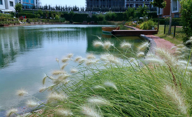 Cem Botanik Projeler Sinpaş Lagün