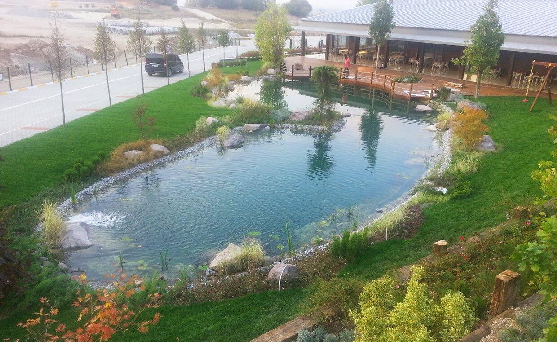Narven Termal Kasaba - Biyolojik Gölet