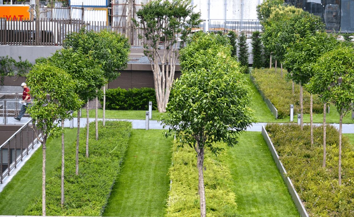 cem-botanik-projeler-torun-center-2