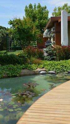 cem-boranik-hizmetler-Biyolojik-Sus-Havuzu-dikey
