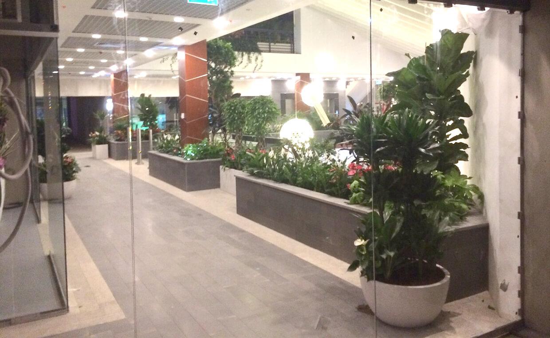 Kazakistan City Avm - Dış Mekan Bitkilendirmesi