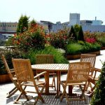 cem botanik - hizmetler - Teras Peyzajı